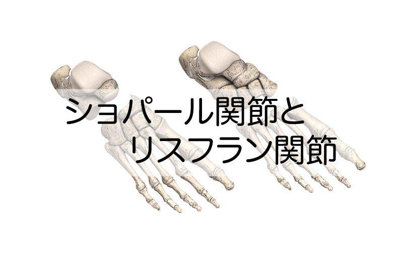 関節 ショパール