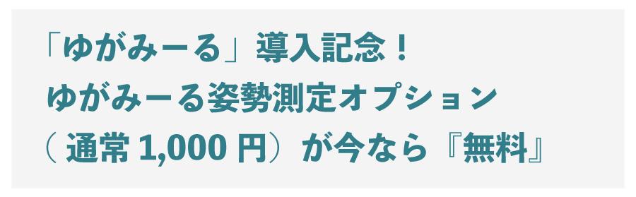 「ゆがみーる」導入記念!-ゆがみーる姿勢測定オプション-(通常1,000円)が今なら『無料』